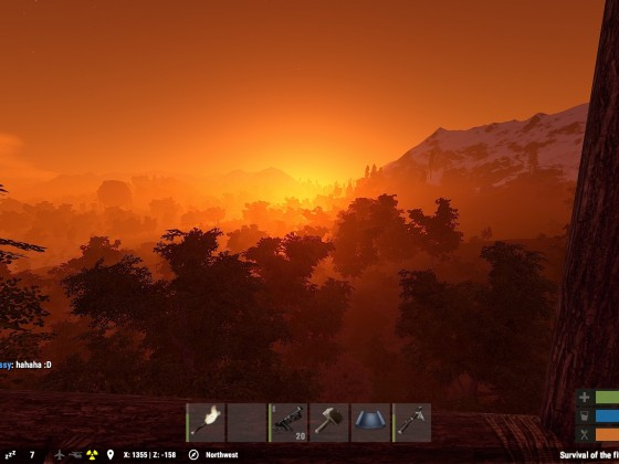 Sunset in Jungle